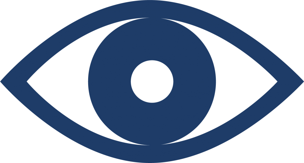 vigilancia icono